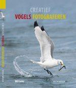 Creatief Vogels Fotograferen Bill Coster
