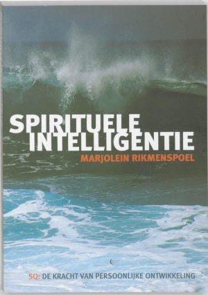 Spirituele Intelligentie 9789069636542