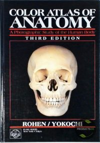 Color Atlas of Anatomy : A Photographic Study of the Human Body 9780896402287
