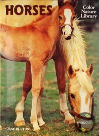 Horses 9780517250549