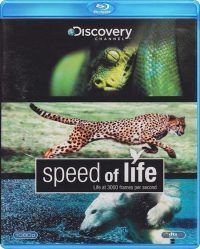 Special Interest - Speed Of Life (Discovery) 8717496855350