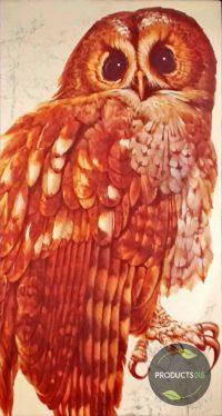 Het Beste Vogelboek 9789064070020